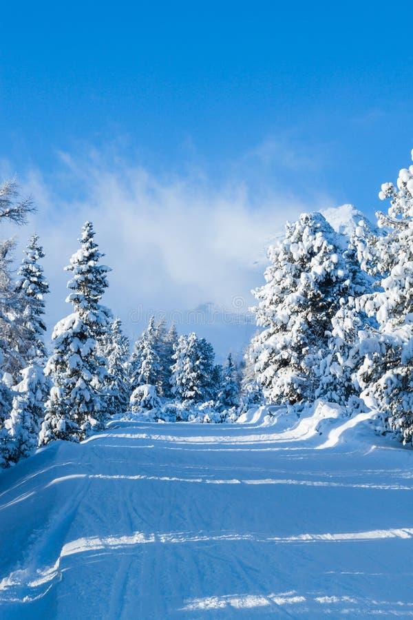 De sleep van de ski in de bergen royalty-vrije stock fotografie