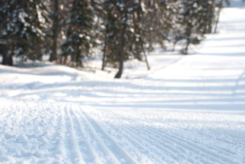 De sleep van de sneeuwscooter stock afbeelding