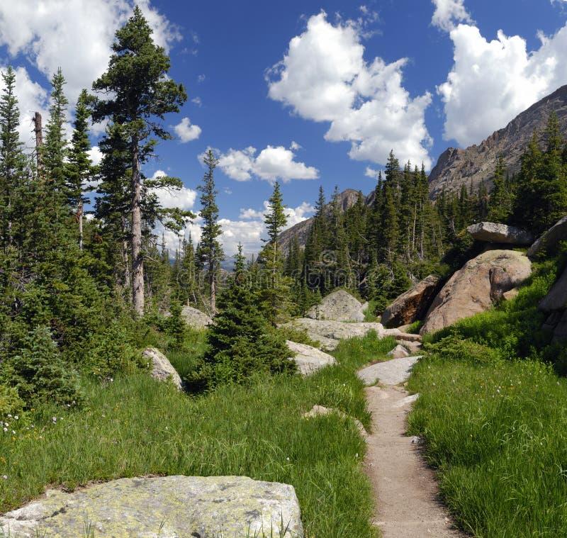 De sleep van de wandeling in de Rotsachtige Bergen van Colorado stock foto