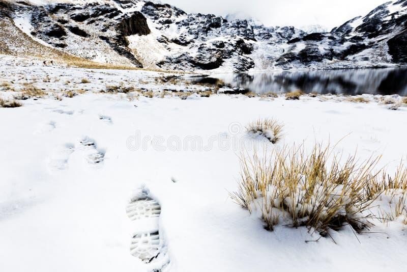 De sleepstappen bevroren meer van het voetafdrukspoor, Condoriri-sneeuwberg stock afbeelding