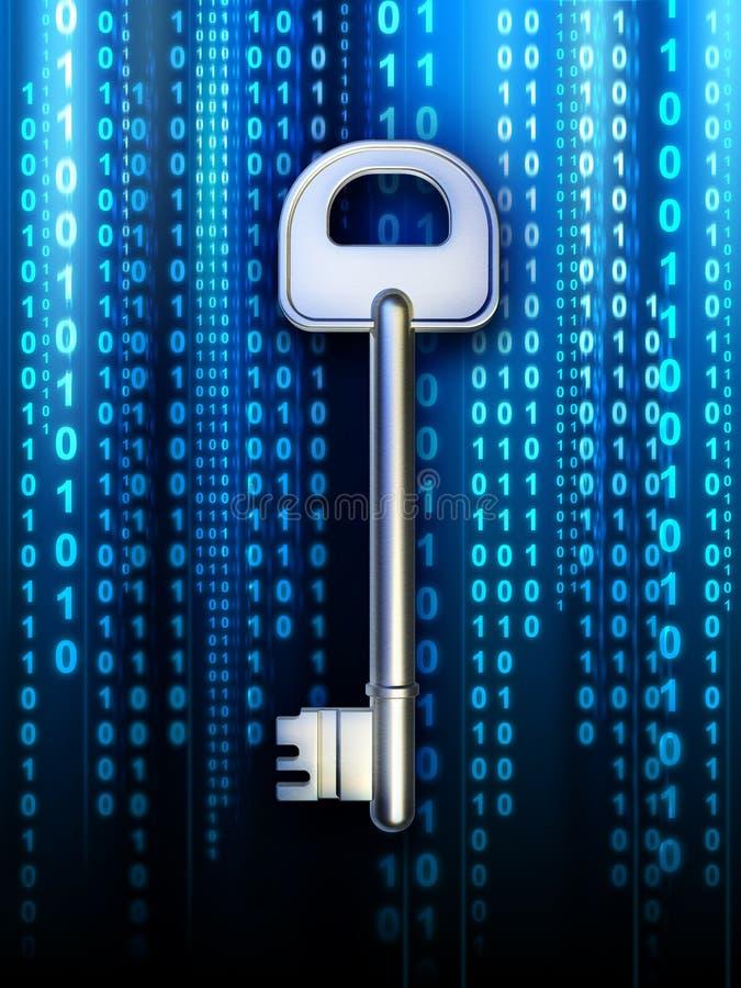 De sleutel van gegevens stock illustratie
