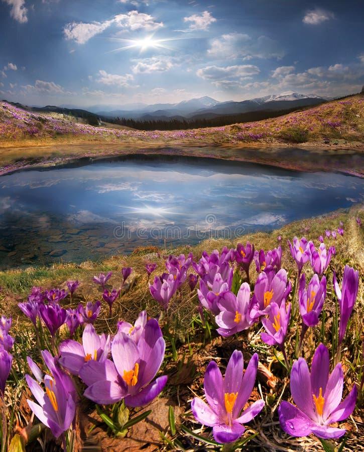 De smelting van de de lentesneeuw en in de Karpatische valleien royalty-vrije stock foto's