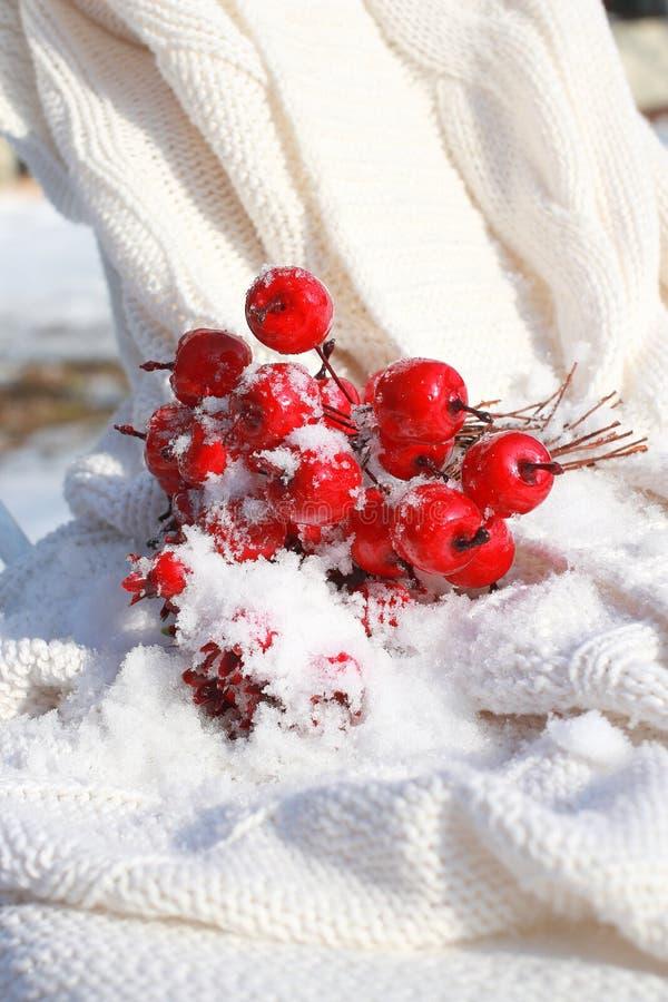 De sneeuw Behandelde Appelen van de Krab stock foto's