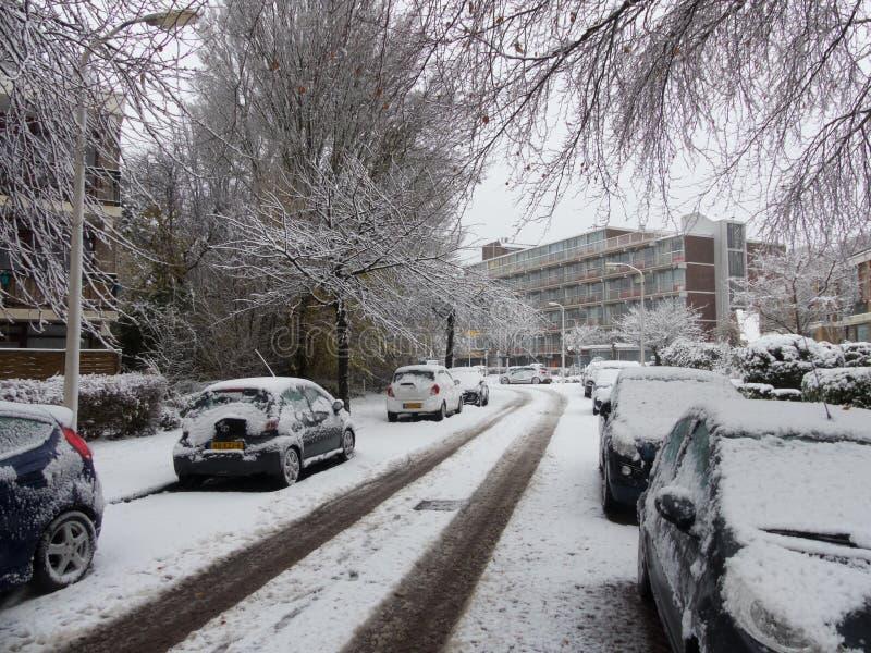 De sneeuw behandelde auto's op sneeuwboom gevoerde stedelijke stadsstraat in de voorsteden tijdens sneeuwonweren worden geparkeer stock foto's