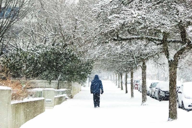 De sneeuw behandelde bomenlijn deze stoep aangezien een persoon op de stoep loopt royalty-vrije stock foto