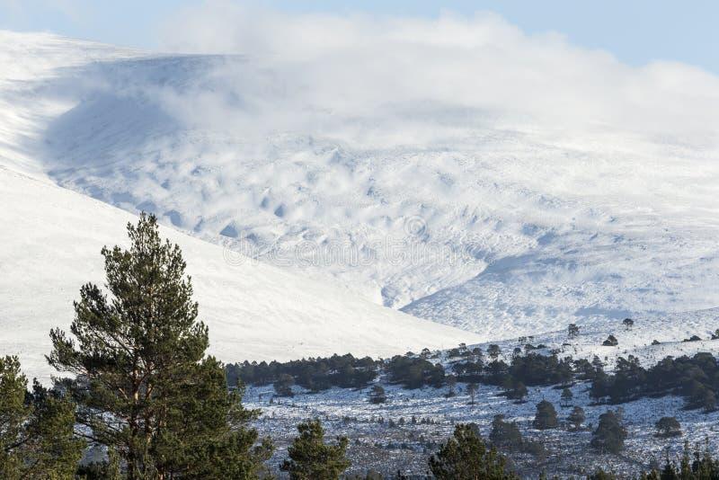 De sneeuw behandelde hellingen van de berg van Geal Charn in Glen Feshie in de Hooglanden van Schotland royalty-vrije stock fotografie