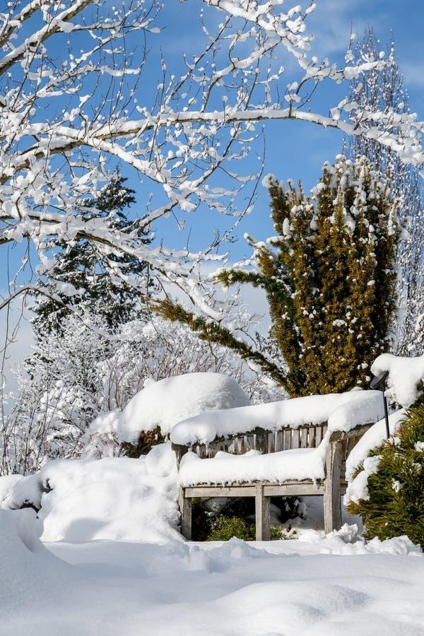De sneeuw behandelde houten bank in sneeuw wintergarden landschap, bomen en struiken tegen een blauwe hemel en witte wolken stock afbeeldingen