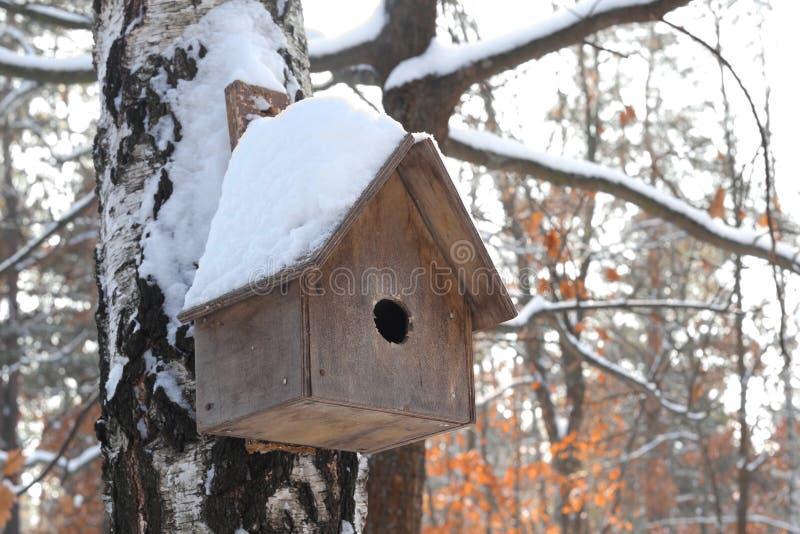 De sneeuw behandelde houten vogelhuis in een de winterbos een vogelhuis in het hout in de winter stock afbeeldingen