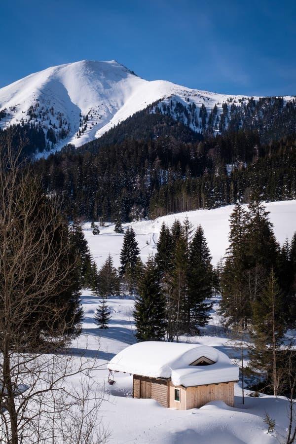 De sneeuw behandelde klein huthuis in vakantie-toevlucht Hohentauern in de winter stock fotografie