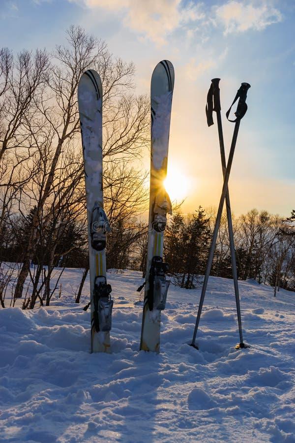 De sneeuw behandelde ski, uit de sneeuw wordt geplakt die stock foto's