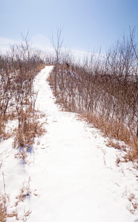 De sneeuw behandelde de wintersneeuwschoen, ski en stijgingssleep stock fotografie