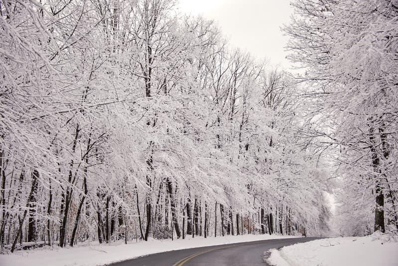 De sneeuw is ontruimd van een landelijke weg na een natte sneeuwval stock afbeeldingen
