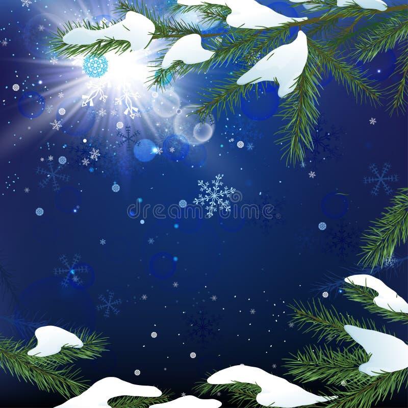 De sneeuw van de kerstboomtak vector illustratie