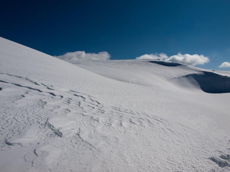 De sneeuw van de lawine royalty-vrije stock afbeeldingen