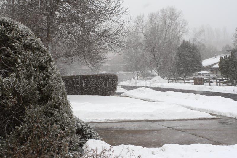 De Sneeuw van de voorWaaier stock foto's