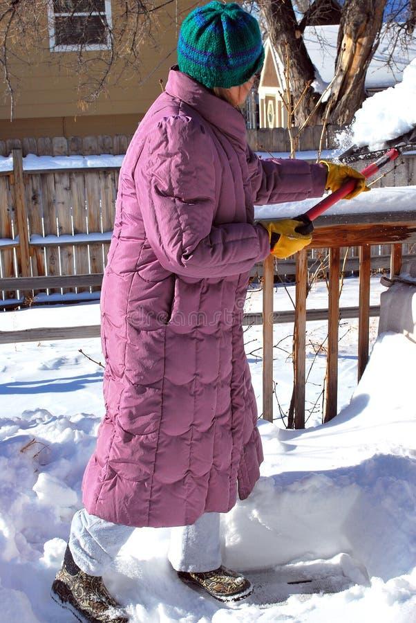 De sneeuw van de winter stock fotografie