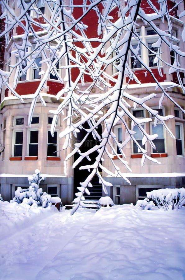 De Sneeuw van de winter stock foto