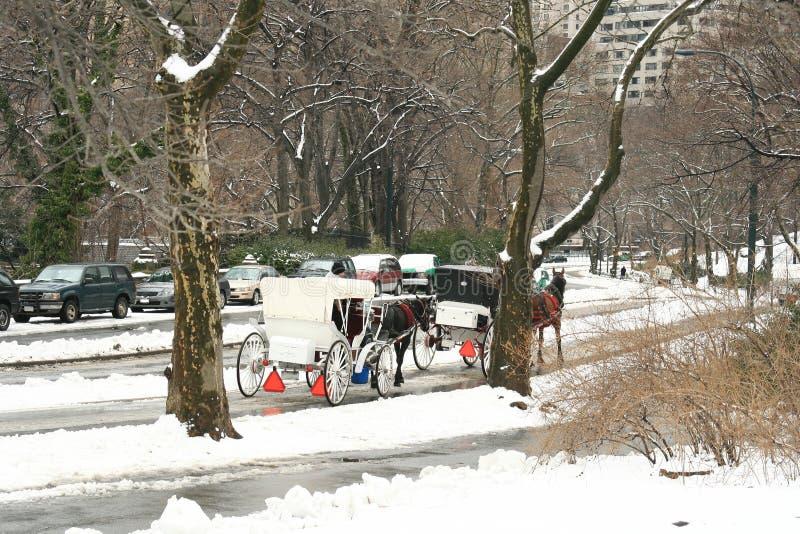 De Sneeuw van de winter in Central Park, de Stad van New York stock foto