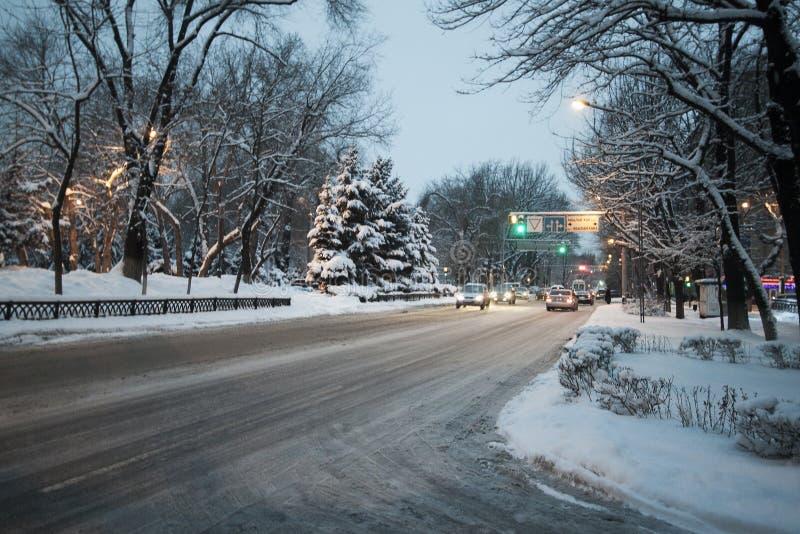 De sneeuw van het de winterpark op bomenkerstbomen ringt snow-covered weg stock foto's