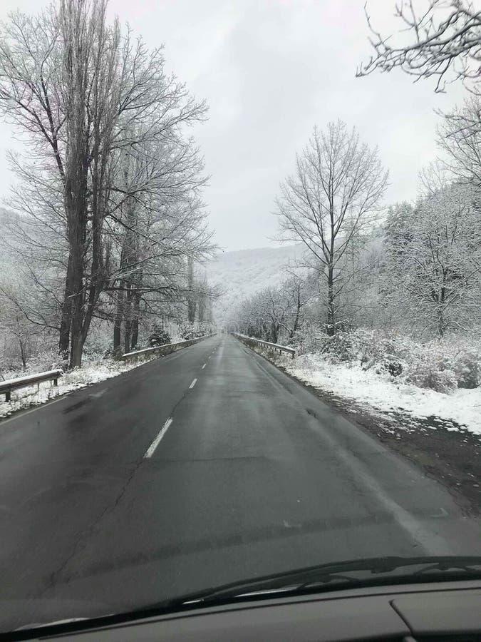 De Sneeuw van de sneeuwsneeuw royalty-vrije stock foto's