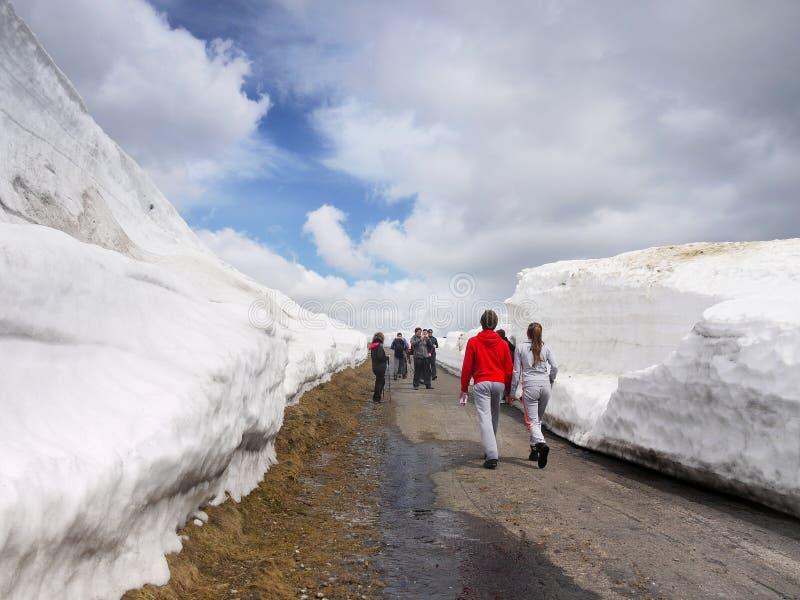 De Sneeuwbankenbergen van de Trekkersweg royalty-vrije stock foto's