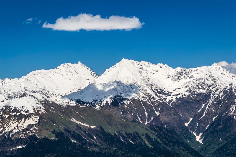 De sneeuwbergbovenkanten zijn behandeld met bos stock foto