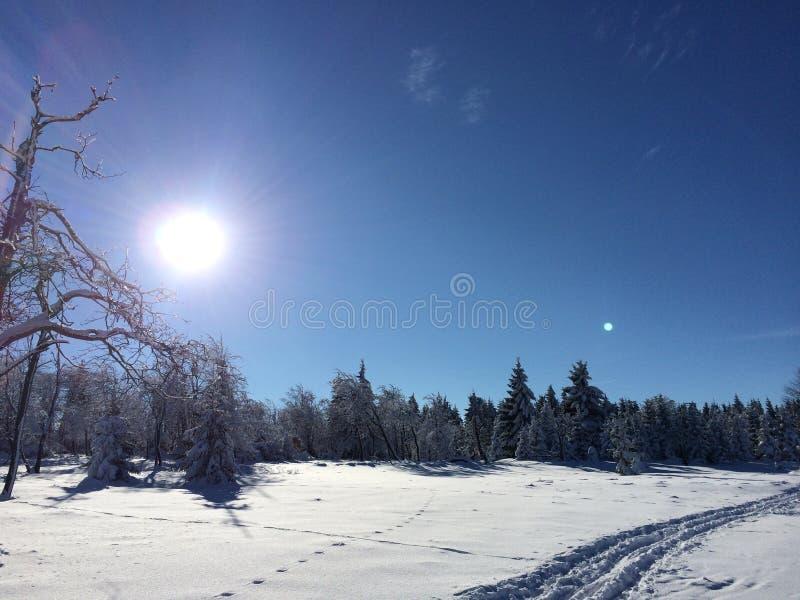 De sneeuwlandschap van de winter stock foto's