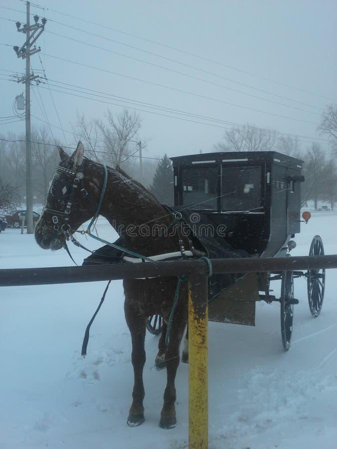 De sneeuwonweer van Indiana stock foto's
