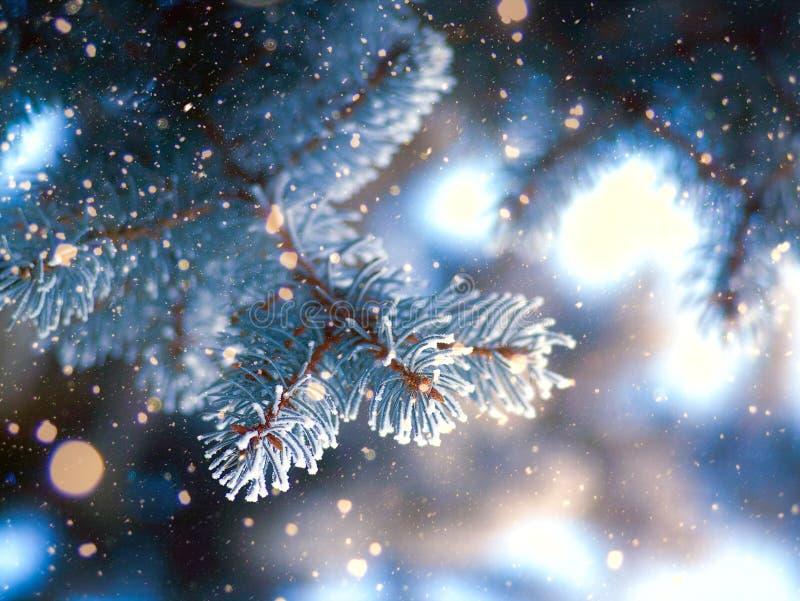 De sneeuwval van de schoonheidswinter stock afbeelding