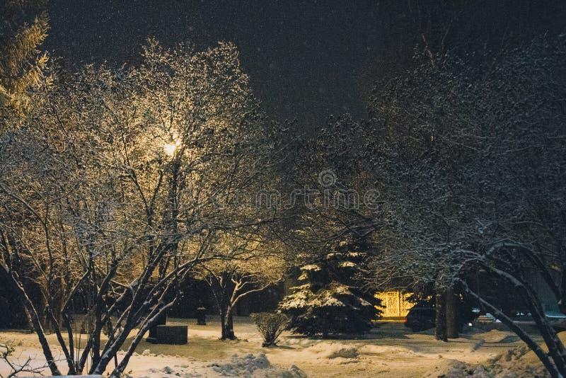 De sneeuwval van de het landschapsavond van de nachtwinter in de snow-covered stad in het licht van lantaarns, close-up, bokeh, z stock foto's