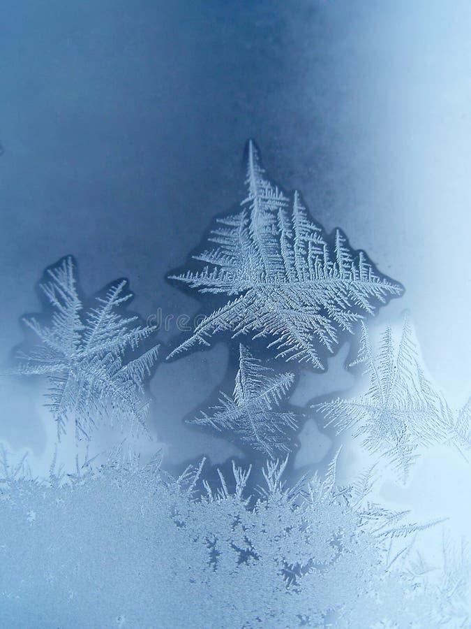 De sneeuwvlokken van de aard. stock foto's