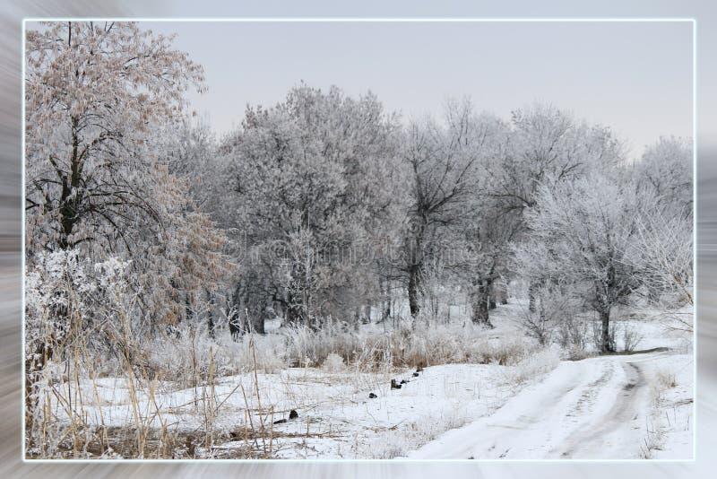 De sneeuwwitte winter Mooi landschap royalty-vrije stock foto's