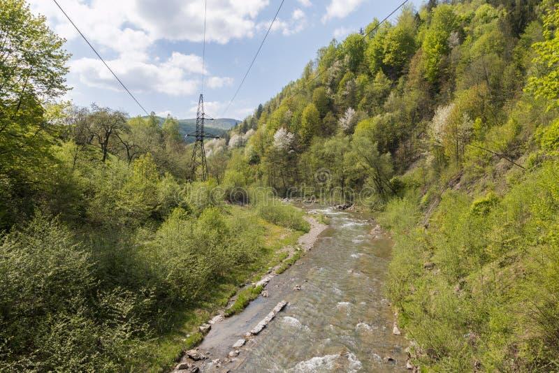 De snelle stroom van de bergrivier stock afbeeldingen