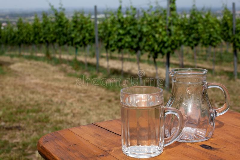 De soda spritzer drinkt verfrissing Glas witte wijn, karaf op houten lijst aangaande achtergronden van druivenbladeren in Heurige stock foto