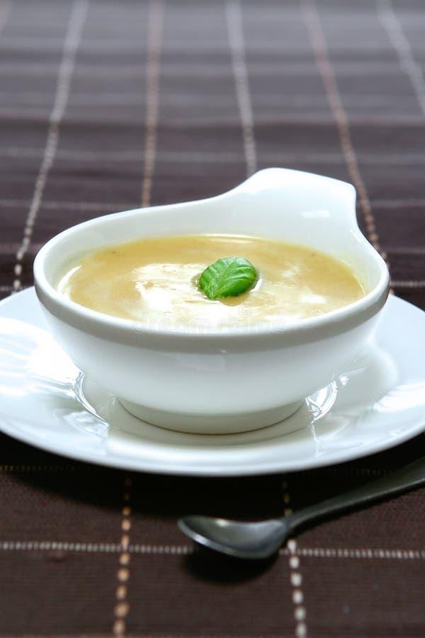 De soep van Butternut en van de aardappel stock afbeeldingen