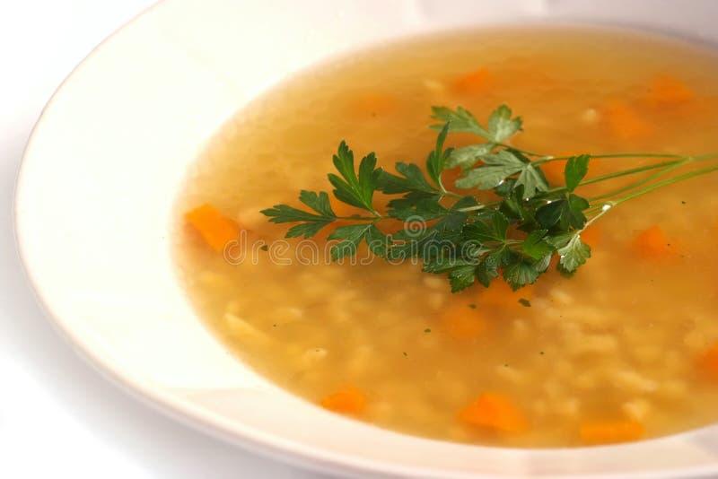 De soep van de kip royalty-vrije stock afbeeldingen