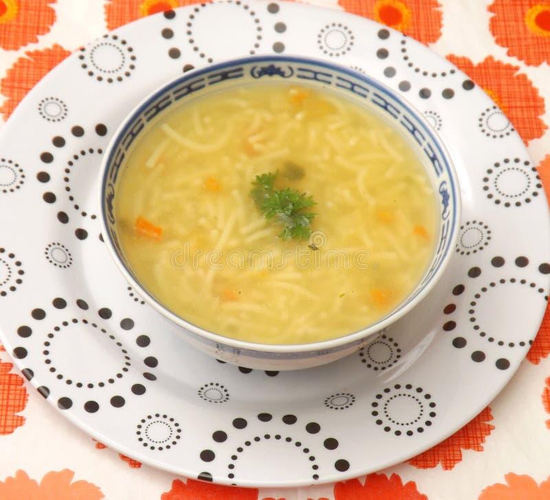 De soep van de kip met noedels stock foto