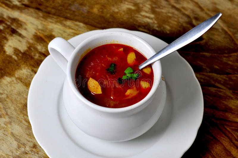 De soep van de kool royalty-vrije stock fotografie