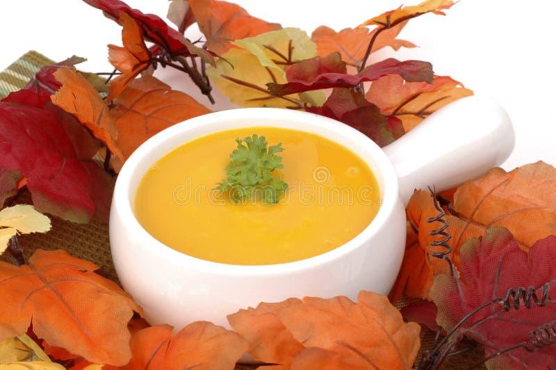 De Soep van de Pompoen van de herfst stock fotografie