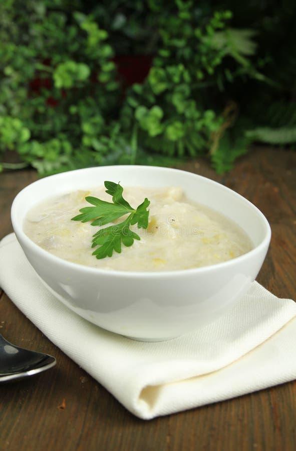 De soep van de prei en van de aardappel royalty-vrije stock afbeeldingen