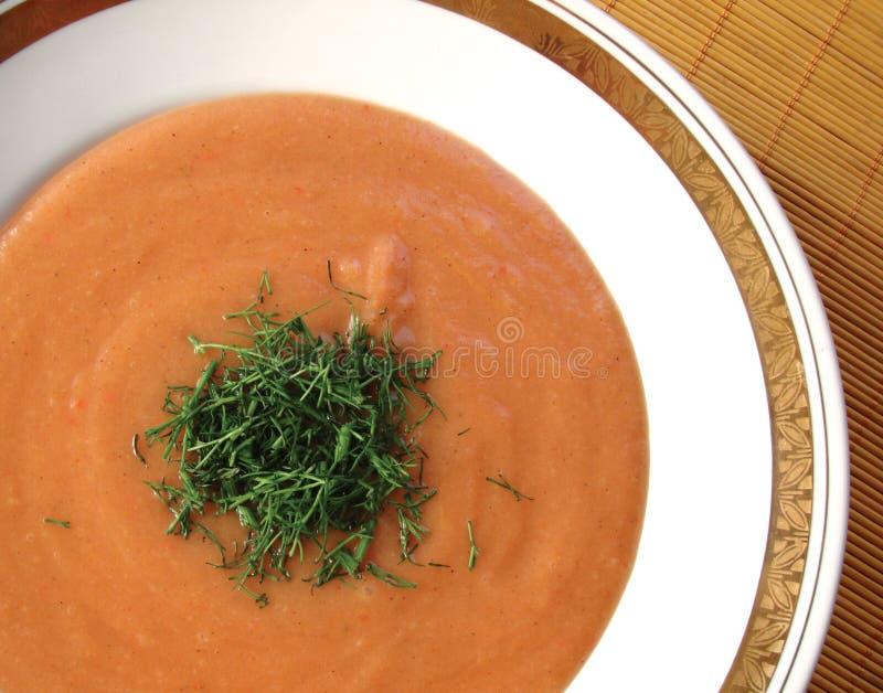 De soep van de room stock afbeeldingen