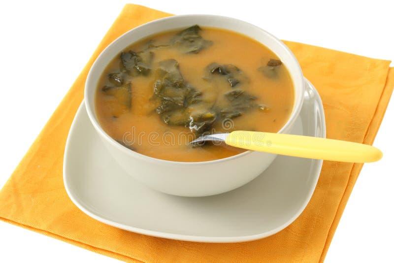 De soep van de spinazie stock afbeelding