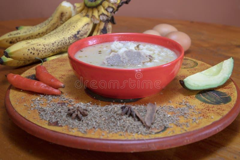 De soep van het koebeen stock foto's