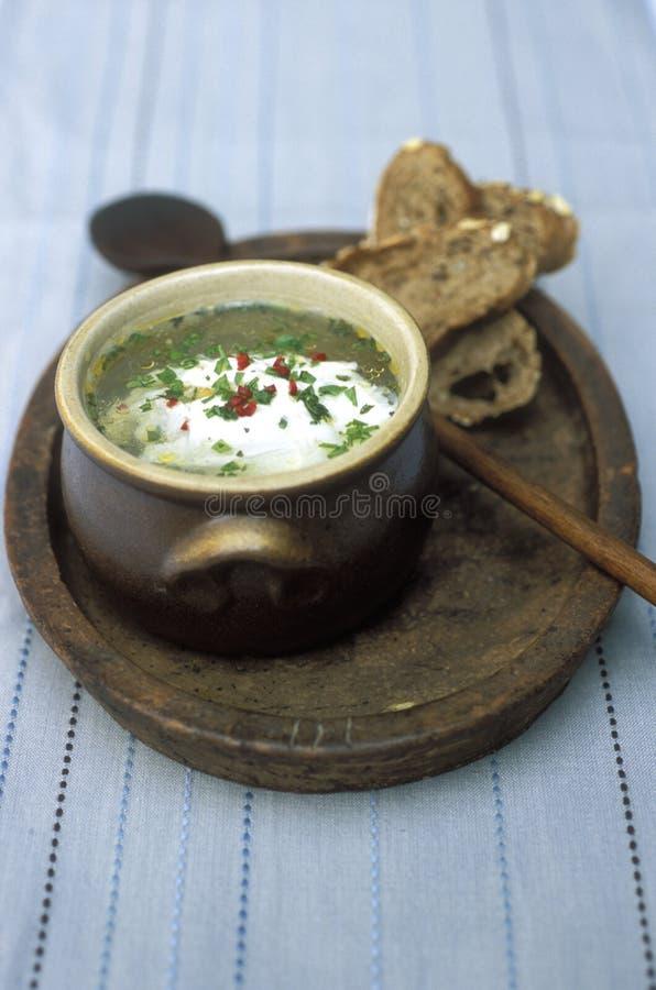 De soep van het kruid en van het ei royalty-vrije stock afbeeldingen