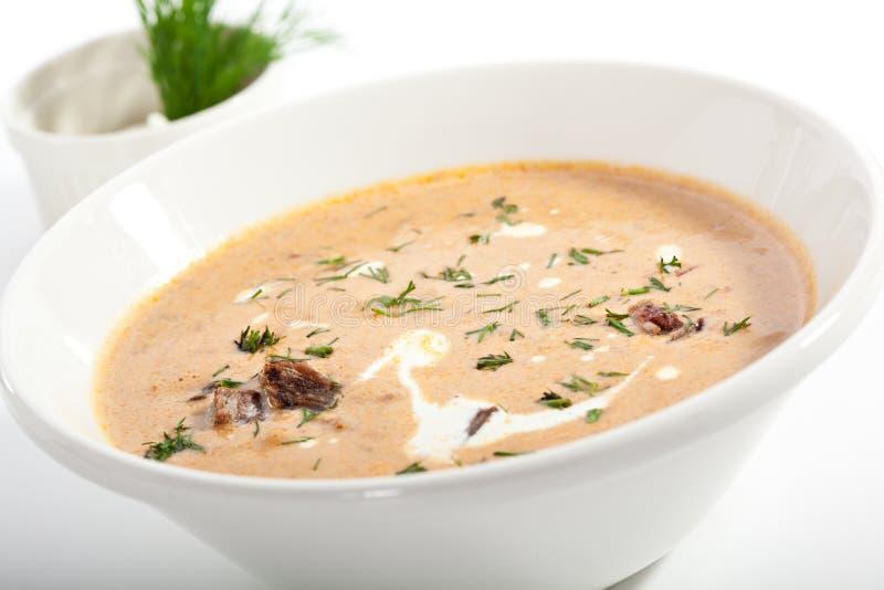 De soep van het vlees stock afbeeldingen