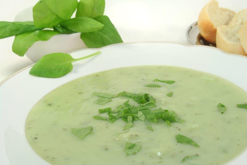 De soep van kruiden royalty-vrije stock foto