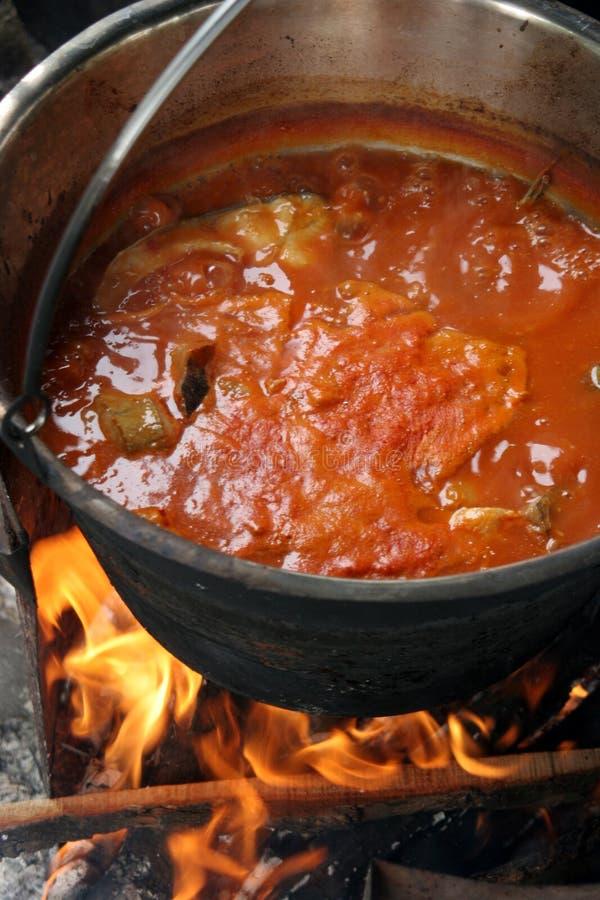 De soep van vissen stock foto