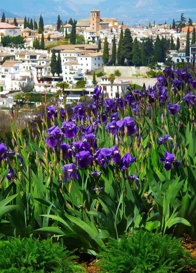 De Spaanse lente stock afbeeldingen