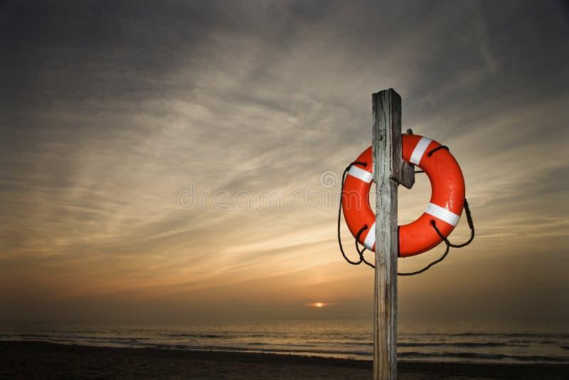 De Spaarder van het leven op Strand stock foto