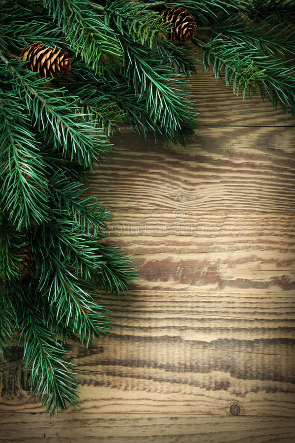De spar van Kerstmis stock afbeelding